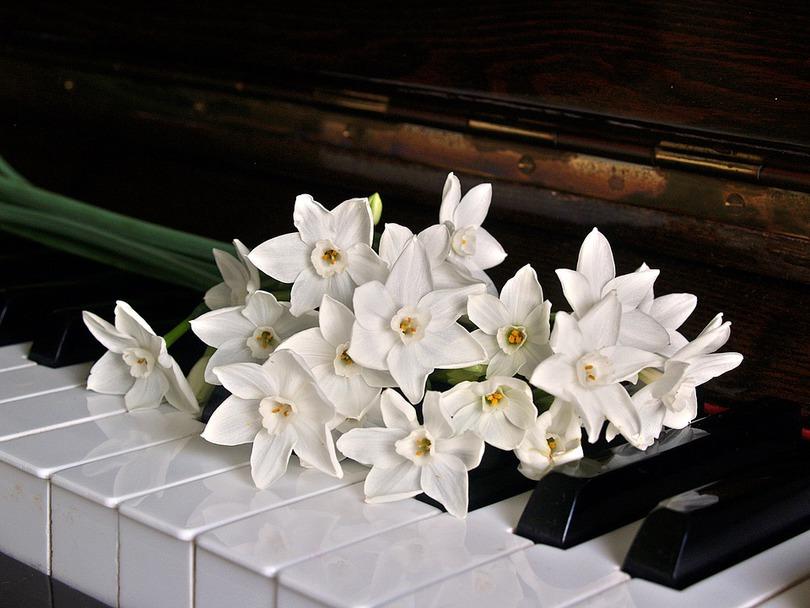 KONCERT: Jarní koncert